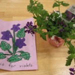 V is for Violets: The Epic Parent Fail